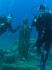 Wyprawa żeglarsko nurkowa Nototenia 2011, Wyspa Elba :: Elba 2011 13