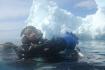 Nurkowanie Grenlandia fot. Maciej Tomaszek :: Galeria 15 21
