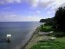 Isla de Gorgona - Pacyfik  Kolumbia 2004 fot. Maciej Tomaszek :: Galeria 16 17