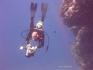 Wyjazd nurkowy, Egipt, Sharm el-Sheikh, 2005, fot. Aleksander Władyka :: Galeria 17 19