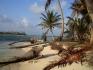 Nurkowanie San Blas Indianie Kuna Panama 2007  fot. Maciej Tomaszek :: Galeria 28 69