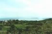 Chorwacja wyspa Cres fot. Maciej Tomaszek :: Galeria 29 13