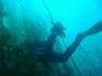 Nurkowanie USA Wyspa Avalon 2006, fot. Maciej Tomaszek :: Galeria 4 40