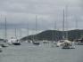 Karaiby 2012 Wyspy Dziewicze Virgin Islands Nototenia :: Karaiby 2012 Wyspy Dziewicze Virgin Islands Nototenia 31