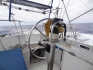 Karaiby 2012 Wyspy Dziewicze Virgin Islands Nototenia 44