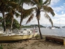 Karaiby 2012 Wyspy Dziewicze Virgin Islands Nototenia 45