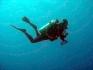 Karaiby 2012 Wyspy Dziewicze Virgin Islands Nototenia 9