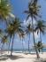 Meskyk Cenoty, Belize 2015 :: Mesky Cenoty Belize 2015 130
